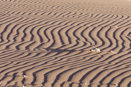 Cile - Deserto de Atacama - Valle de la Luna   by liviob