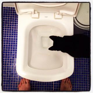 Trying to pee | by luizfilipe