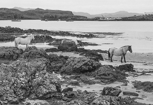 Eigg 89080713 | by james austin (photographer)