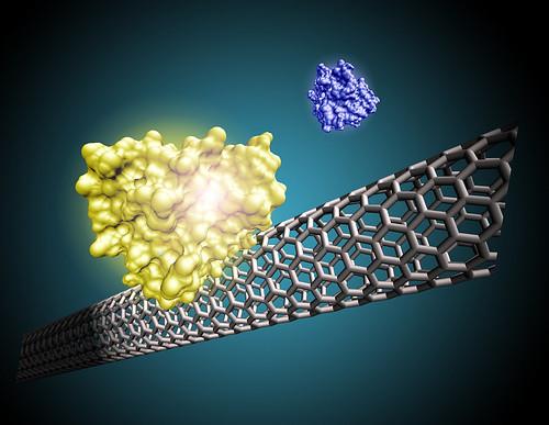 Nanotube sensor | by Oregon State University