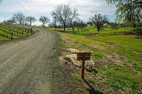 2014-03 Opolo Vineyards hikes-04_edited-1 | by fjkehljr