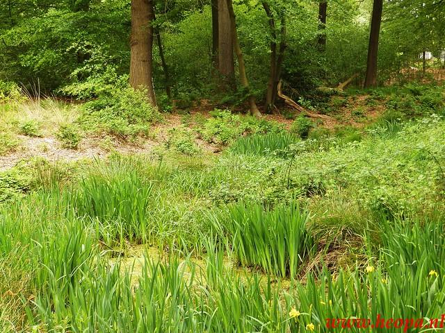 2016-05-21           Scherpenzeel             46 Km  (102)