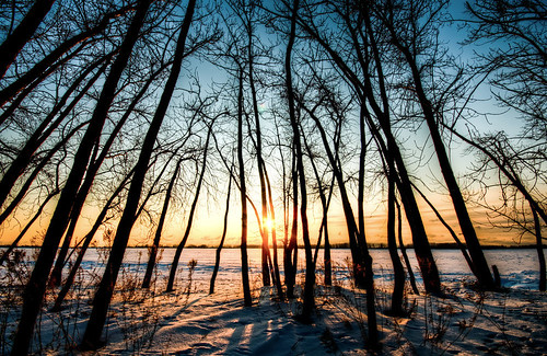 trees toronto beach nature sunrise landscape geotagged nikon hdr cherrystreet d300 wardsisland sigma1020mm 5exposurehandheldhdr 4363769799002679343411922455