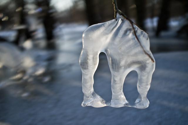 Winterelefant