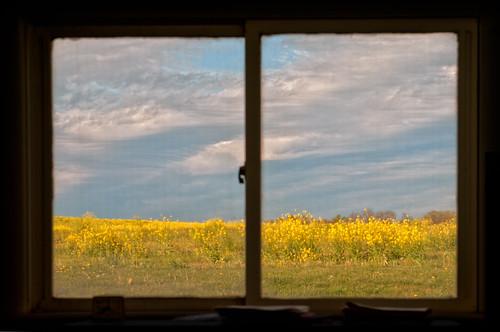 sky window clouds view pennsylvania framed wildflowers eastberlin themannings handweavingschool