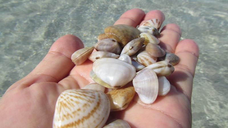 Chaweng Beach - Snorkel April