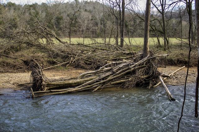 Flood debris, Spring Creek, Jackson Co, TN