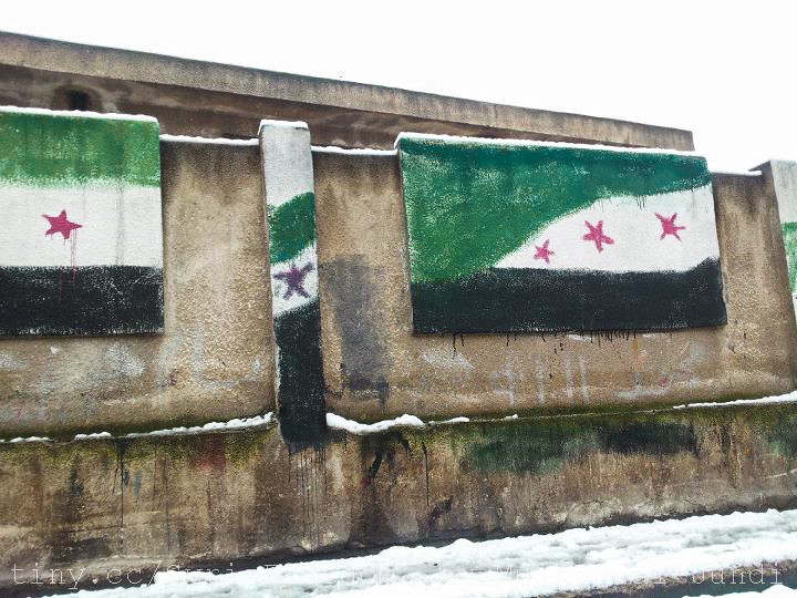 Image result for syrian flag painted
