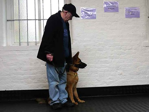 January Day Puppy Class | by Chadkirk Dog Training Club