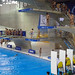 Diving World Cup
