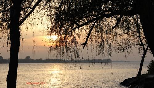 trees sunset sun lake nature wisconsin canon lakeside beaverdam canoneos60d