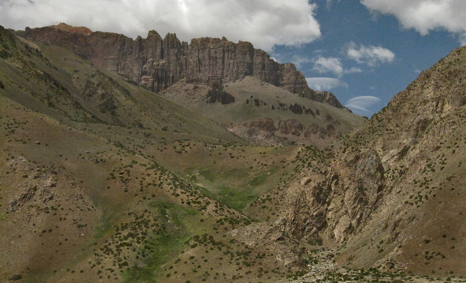 Mendoza 354
