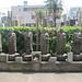 Cemetery, Shinjuku, Tokyo