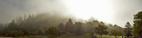 larrydarnell californialandscapeart california roaringcamp landscapeart