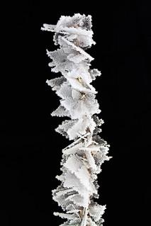 Snøflak-fallos-snø-ting | by H.Treider