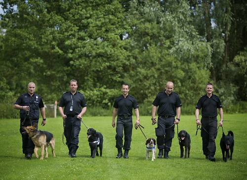 Day 67 - West Midlands Police - Dogs unit | by West Midlands Police