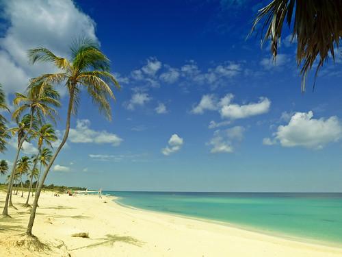 vacation holiday beach paradise havana cuba palmtree tropical caribbean playadeleste villabacuranao
