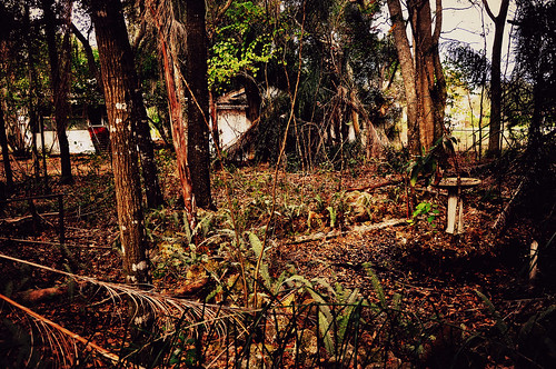 abandoned clermont lakecounty oldflorida citrusfarm