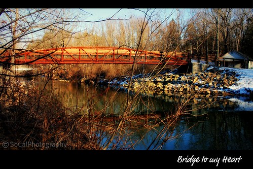 bridge water creek stream river golden framed leaves trees fall pennsylvania pa reflections nature natural landscape lehighvalley snow winter rocks branches forest woods jacobsburg park nazareth waterscape belfast twigs light shadows explore explored carolynlandi
