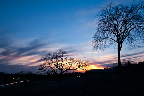 trees sunset sky night clouds cloudy massachusetts common northreading