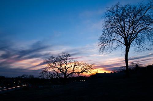trees sunset sky night clouds cloudy massachusetts common northreading