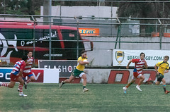 Rugby-sulamericano-969