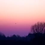 zo, 15/01/2012 - 17:27 - Dakota-20120115-17-27-16-IMG_1763
