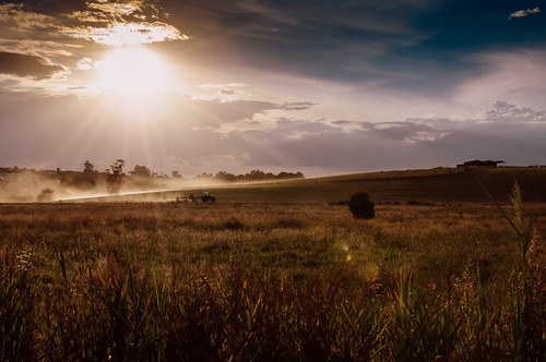 sun tractor field landscape farm australia hay sunray paddock sunflare gippsland warragul nikond90 nikkor1685 nikonflickraward vorka70