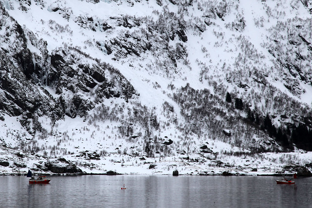 Fishermen Lofoten