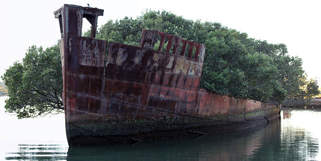 SS Ayrfield shipwreck site - Homebush Bay, Sydney