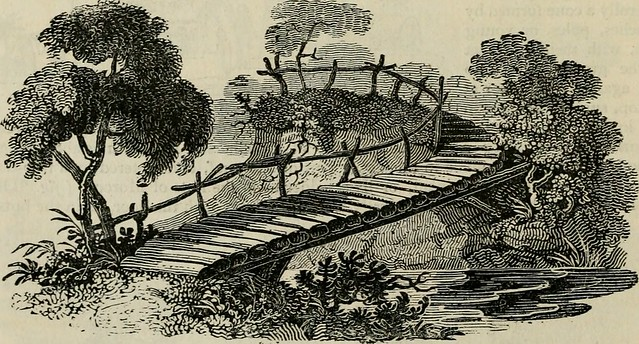 "Image from page 367 of ""An encyclopædia of gardening; comprising the theory and practice of horticulture, floriculture, arboriculture, and landscape-gardening, including all the latest improvements; a general history of gardening in all countries; and a s"