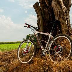Radfahren in Limburg #aktivurlaub #geniesselimburg #fietsen #Fahrrad