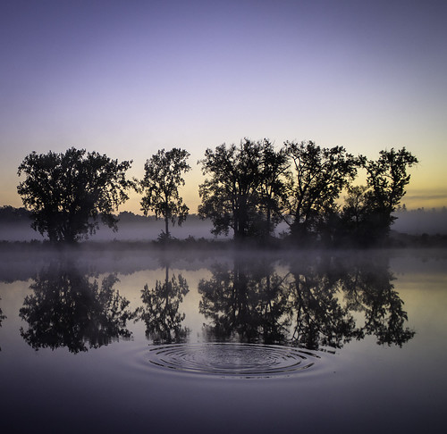 morning blue trees mist reflection sunrise ripples mohawkriver