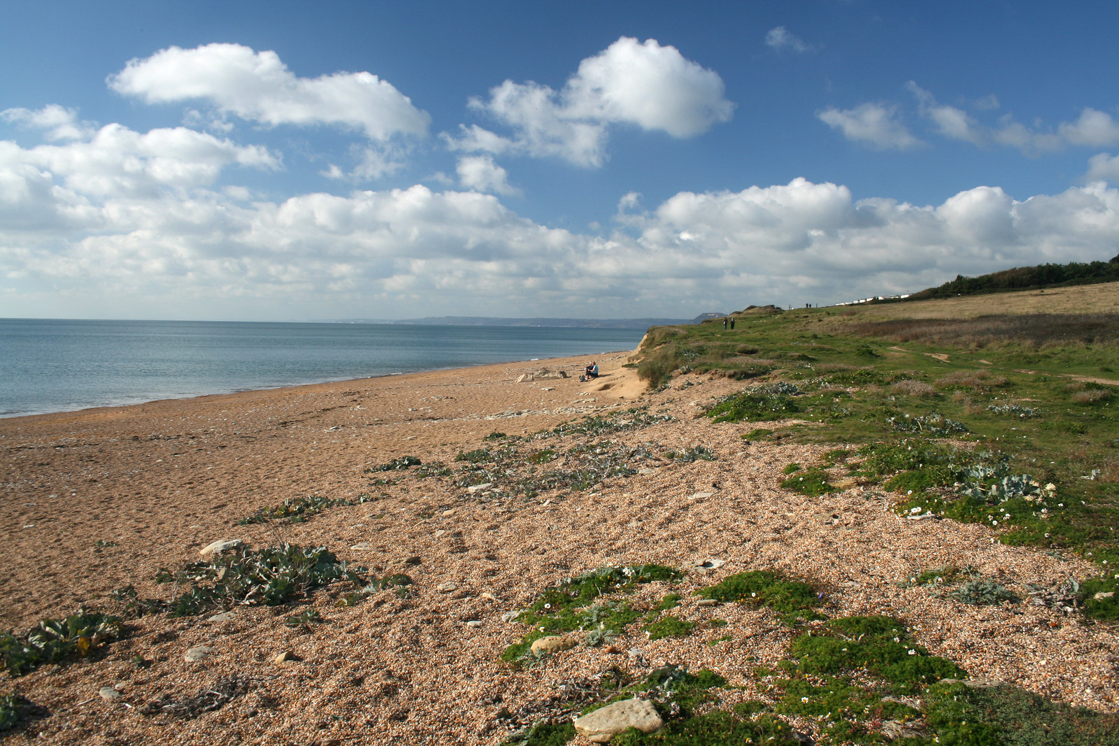The coast near Abbotsbury
