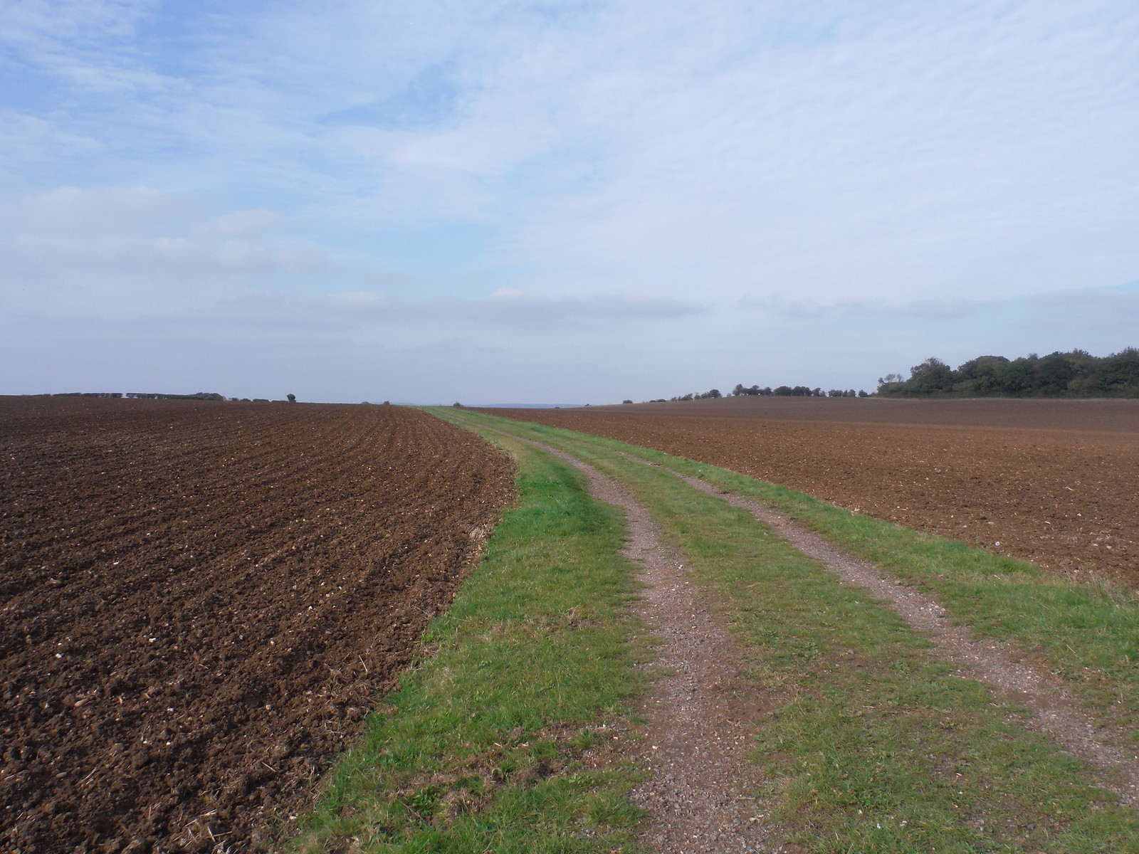 The route to Barton Hills (on Shortcut II) SWC Walk 229 Leagrave to Harlington