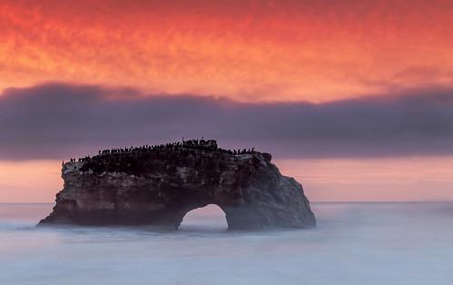 california ca longexposure santacruz fog clouds sunrise day pacific cloudy hightide naturalbridges escaype escaypeday