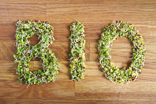 Bio word made of organic sprouts | by Vegan Photo