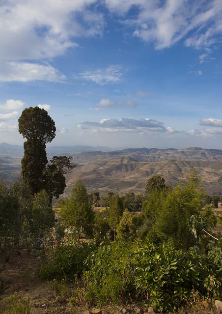 Landscape in Ethiopia near Harar