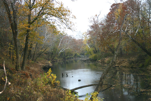 Clarks River in the fall | by USFWS/Southeast