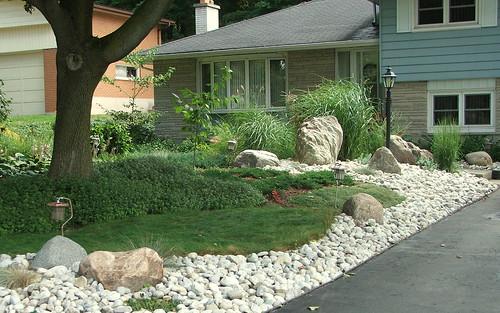 Eco-lawn and sweet woodruffe