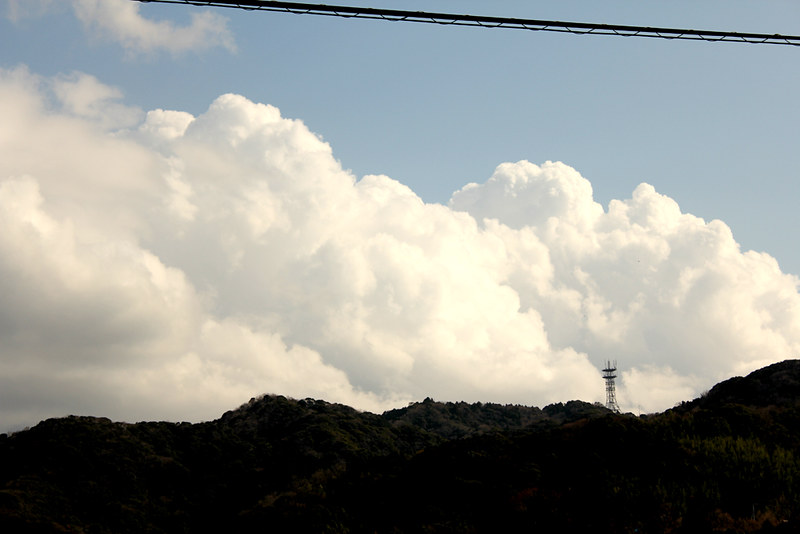20120311_伊予ヶ岳_0089
