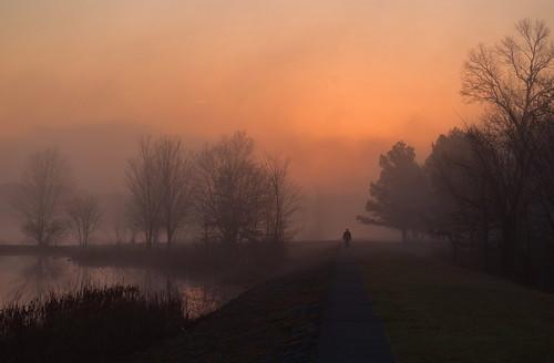 fog sunrise fogography minsilake