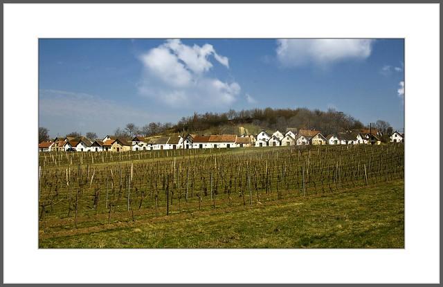 Kellergassen von Wildendürnbach (Niederösterreich)