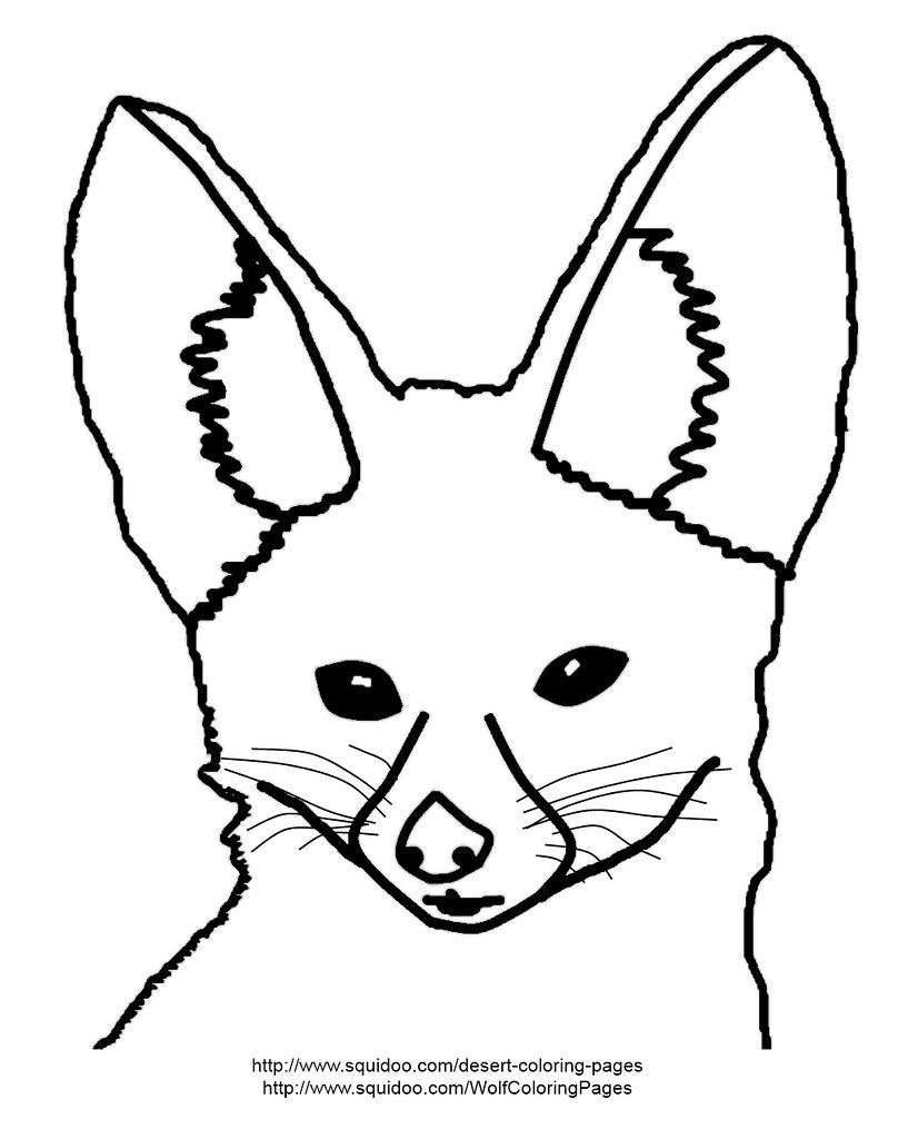 Fennec Fox Coloring Page Fennec Fox Coloring Page Adapted