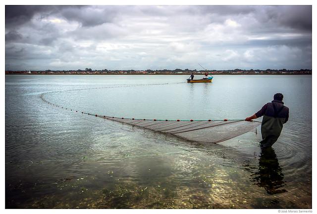 À pesca com rede