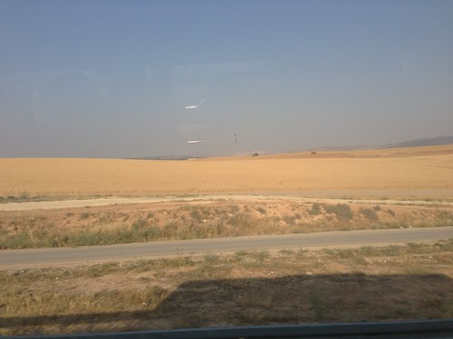 israel fields 2013 spring2013