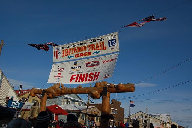 Iditarod finish line 2012