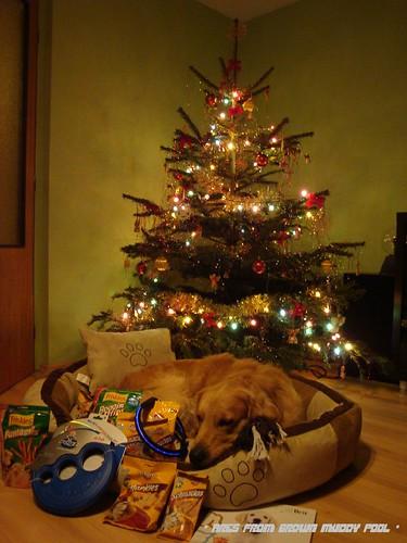 2011_12_24 - Vánoce