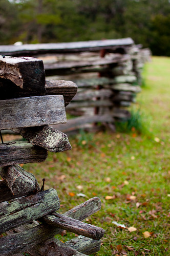 Wooden Fence | by wenzday01