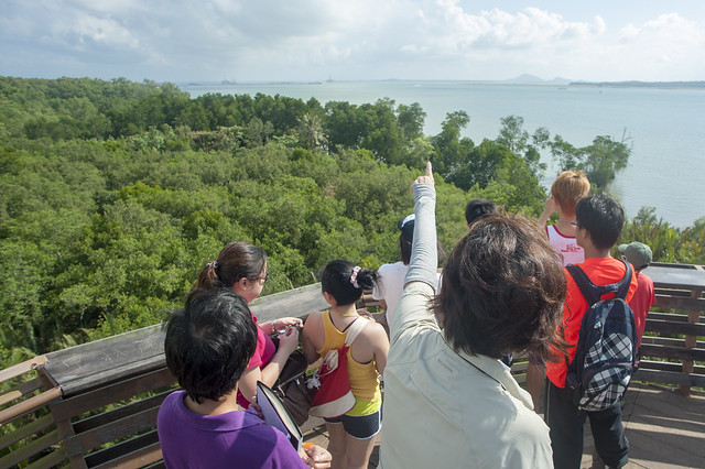 Chek Jawa boardwalk tour with the Naked Hermit Crabs